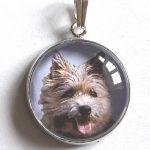 medaille pour chien granby Bien choisir  médaille chien avec photo