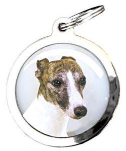 medaille chien a graver Bien choisir  médaille chien lancy