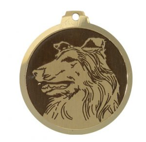 médaille gps pour chien Conseil  medaille chien valleyfield