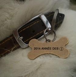 medaille pour chien spitz Conseil  medaille chien lingot