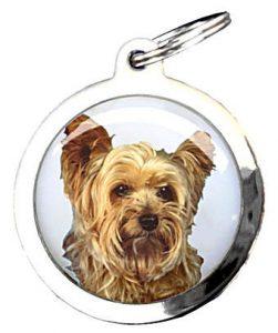 medaille pour chien machu Bien choisir  medaille pour gros chien