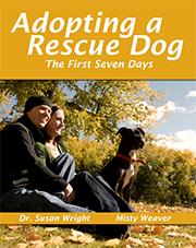 Adopter un couvercle avant de chien de sauvetage