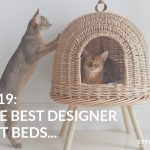 2019: Les meilleurs lits pour chats de marque  – Médaille personnalisée pour chiens