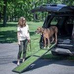 5 meilleures rampes pour voitures / camions pour chiens en 2019  – Médaille personalisée