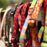 Colliers, licous et harnais… Oh mon Dieu! Choisir le bon pour votre chien  – Médaille chien