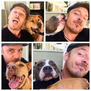 Le principe 10/10   Le blog de la bonne vie de chien  –  Médailles chiens