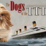 Se souvenir des chiens du Titanic  –  Médaille chien gravée