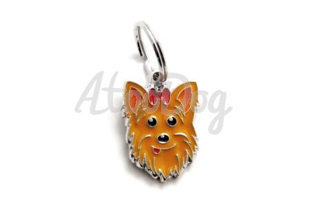 medaille anti puce pour chien Conseil  medaille pour chien yorkshire
