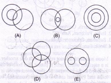 Ch.7: – Diagrammes de Venn basés sur la logique: – Exercice 1  – Médaille personnalisée pour chiens