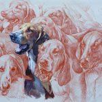 Médaille pour chien medaille chien jardiland