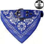 Médaille pour chien bandana pour chat