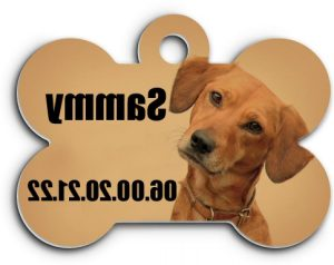 Médaille pour chien chien avec médaille