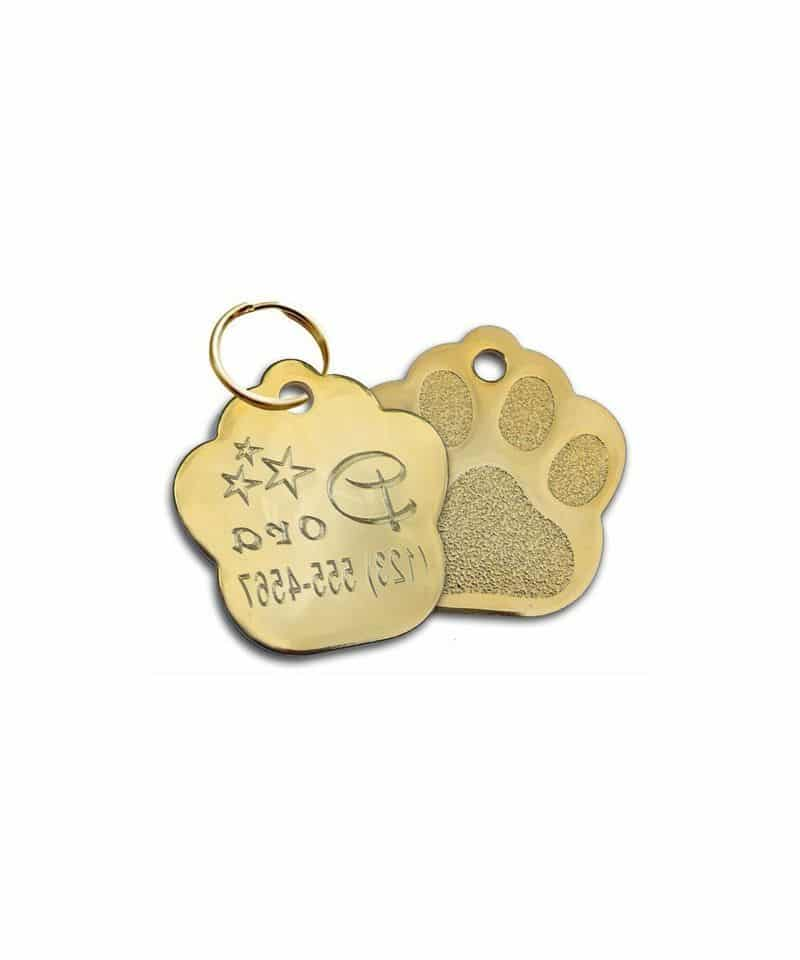 Médaille chien collier identification chiot