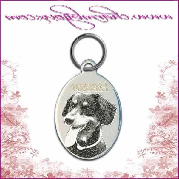 Médaille chien médaille chien pas cher